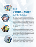 Virtual Audit